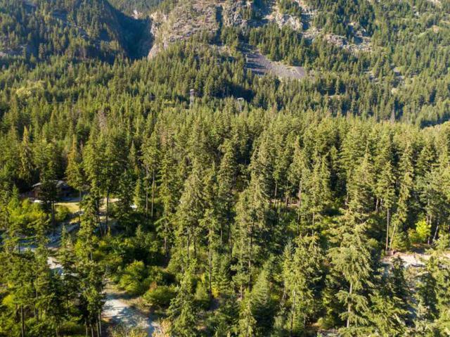 DL 1251 Summit Road Lt B, Pemberton, BC V0N 1L0 (#R2270180) :: Vancouver House Finders