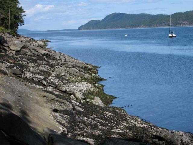 Wise Island Lt 16, Galiano Island, BC V0N 1P0 (#R2271952) :: TeamW Realty