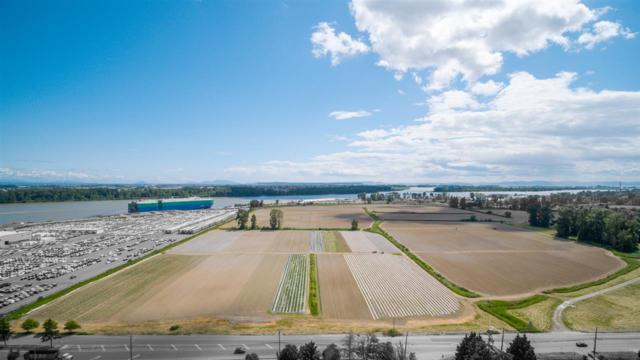 13240 Steveston Highway, Richmond, BC V0V 0V0 (#R2273185) :: West One Real Estate Team