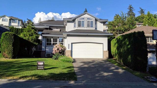 23715 106 Avenue, Maple Ridge, BC V2W 1B4 (#R2276840) :: Re/Max Select Realty