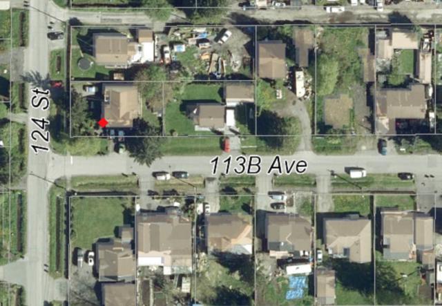 12421 113B Avenue, Surrey, BC V3V 3M6 (#R2278003) :: TeamW Realty