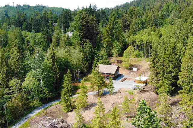 50235 Lookout Road, Ryder Lake, BC V4Z 1A5 (#R2279135) :: JO Homes | RE/MAX Blueprint Realty