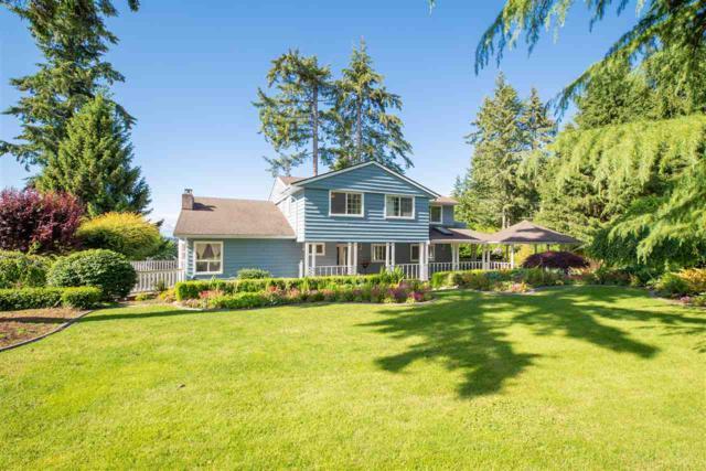 2882 141 Street, Surrey, BC V4P 2H8 (#R2280478) :: Re/Max Select Realty