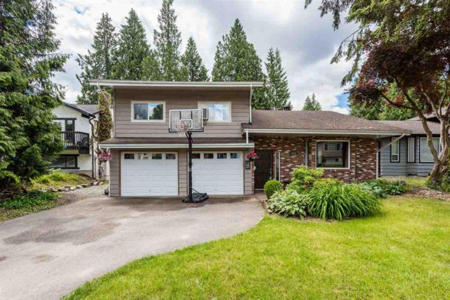 1670 Windermere Place, Port Coquitlam, BC V3B 2K2 (#R2280495) :: Re/Max Select Realty