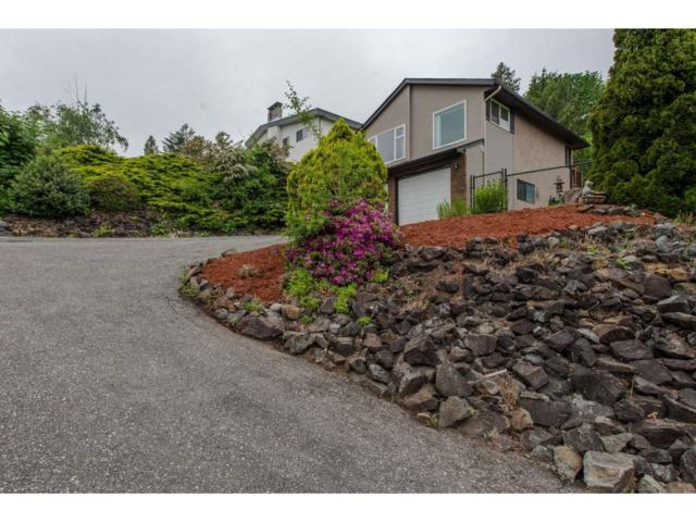 47600 Mountain Park Drive, Chilliwack, BC V2P 7P6 (#R2282530) :: Vancouver House Finders
