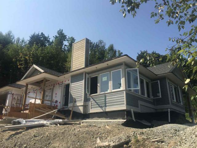 9865 286 Street, Maple Ridge, BC V2W 1K9 (#R2285954) :: JO Homes | RE/MAX Blueprint Realty