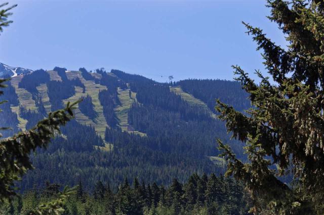7313 Toni Sailer Lane, Whistler, BC V0N 1B7 (#R2287553) :: JO Homes   RE/MAX Blueprint Realty
