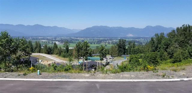 8250 Nixon Road Lot 30, Chilliwack, BC V4Z 1L3 (#R2288536) :: Vancouver House Finders