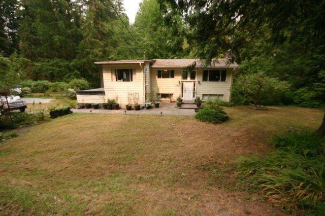 11659 272ND Street, Maple Ridge, BC V0M 1S0 (#R2297051) :: JO Homes | RE/MAX Blueprint Realty