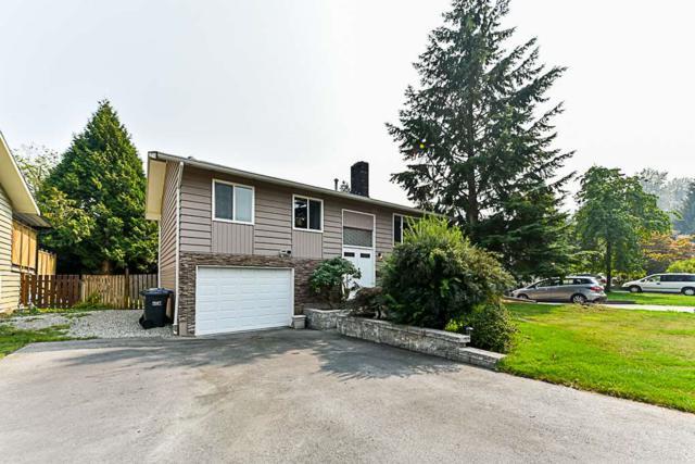 1102 Ellis Drive, Port Coquitlam, BC V3B 1G8 (#R2297115) :: Vancouver House Finders