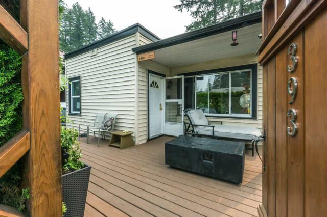393 Alder Street, Cultus Lake, BC V2R 4Z1 (#R2297217) :: West One Real Estate Team