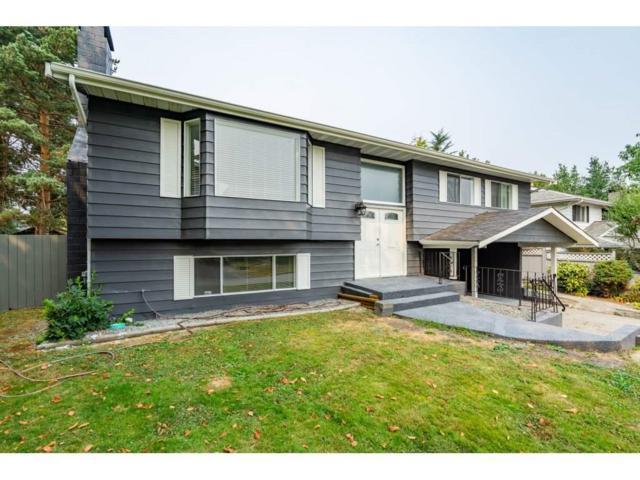 11817 229 Street, Maple Ridge, BC V2X 6P9 (#R2297543) :: West One Real Estate Team