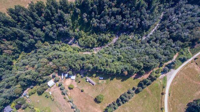 42661 Canyon Road, Columbia Valley, BC V2R 4X7 (#R2298366) :: Vancouver House Finders
