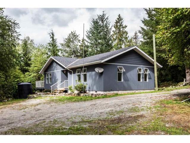 28511 104 Avenue, Maple Ridge, BC V2W 1L5 (#R2301173) :: JO Homes | RE/MAX Blueprint Realty