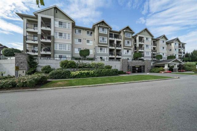 19673 Meadow Gardens Way Way #213, Pitt Meadows, BC V3Y 0A1 (#R2303241) :: JO Homes | RE/MAX Blueprint Realty