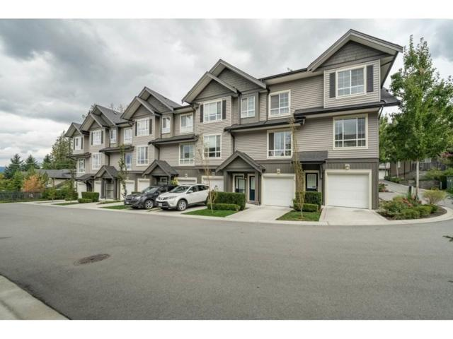 4967 220 Street #62, Langley, BC V3A 0G3 (#R2305364) :: West One Real Estate Team