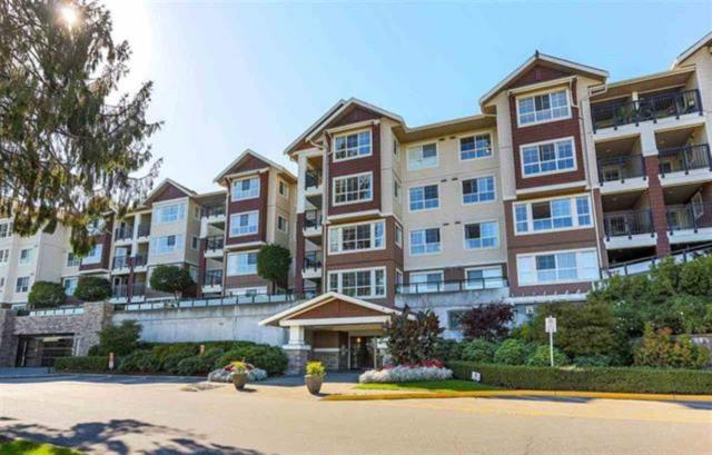 19677 Meadow Gardens Way #214, Pitt Meadows, BC V3Y 0A2 (#R2306902) :: JO Homes | RE/MAX Blueprint Realty