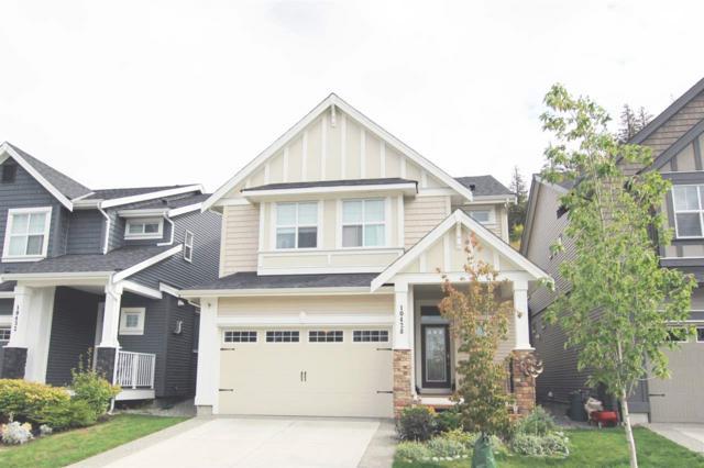 10428 Mceachern Street, Maple Ridge, BC V2W 0H8 (#R2306915) :: Vancouver House Finders