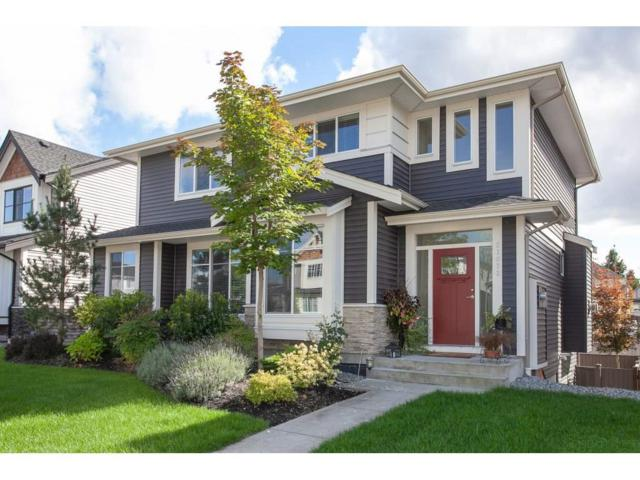 27072 35A Avenue, Langley, BC V4W 0A4 (#R2307537) :: JO Homes | RE/MAX Blueprint Realty