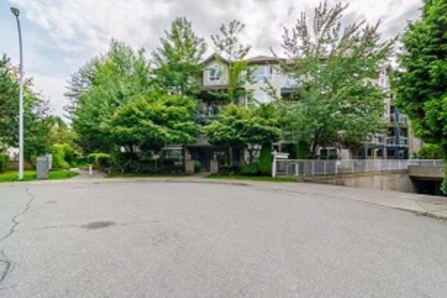 8115 121A Street #414, Surrey, BC V3W 1J2 (#R2307562) :: JO Homes   RE/MAX Blueprint Realty