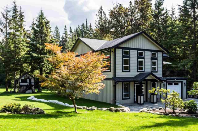 12266 Bell Street, Mission, BC V4S 1C3 (#R2308176) :: JO Homes | RE/MAX Blueprint Realty