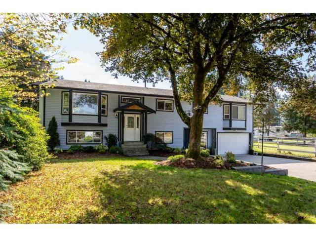 24074 52 Avenue, Langley, BC V2Z 2N3 (#R2308350) :: West One Real Estate Team