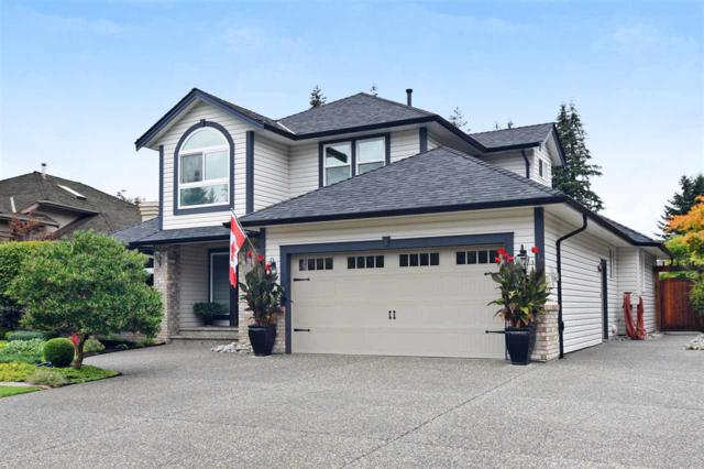 20821 43A Avenue, Langley, BC V3A 8K3 (#R2308844) :: JO Homes | RE/MAX Blueprint Realty