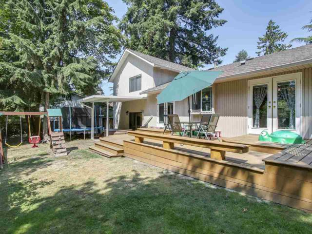 10967 Collings Place, Delta, BC V4C 7E7 (#R2312909) :: TeamW Realty