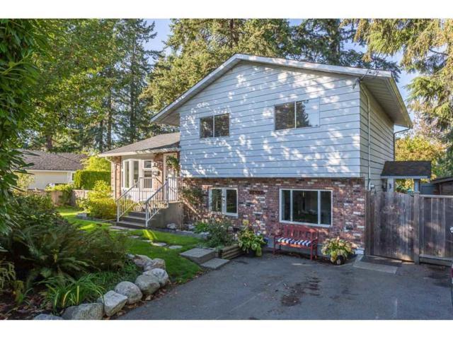 11851 98A Avenue, Surrey, BC V3V 2L2 (#R2313177) :: Vancouver Real Estate