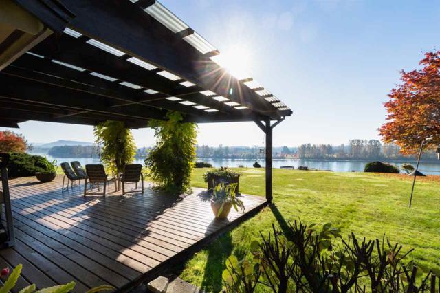 11420 River Wynd, Maple Ridge, BC V7V 1K9 (#R2316755) :: Vancouver Real Estate
