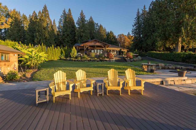 29501 Silver Crescent, Mission, BC V4S 1J1 (#R2317278) :: Vancouver Real Estate