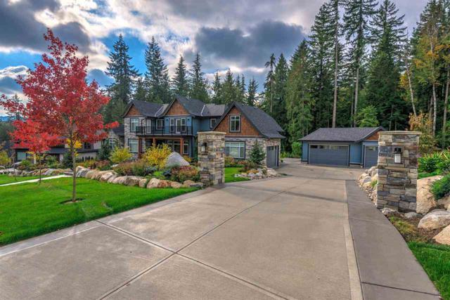 12295 267 Street, Maple Ridge, BC V2W 1N9 (#R2317961) :: West One Real Estate Team
