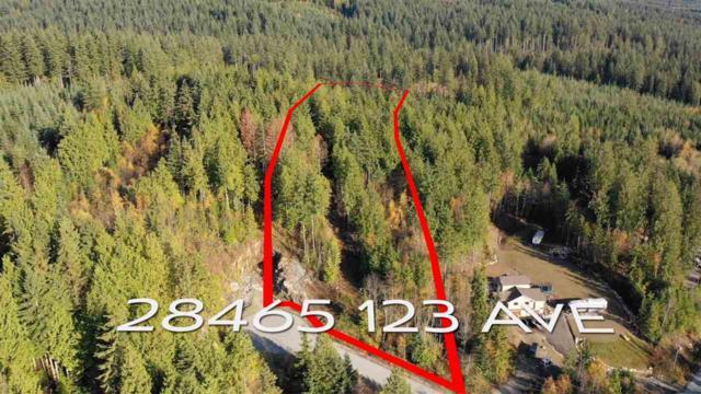 28465 123RD Avenue, Maple Ridge, BC V2W 1M1 (#R2319356) :: West One Real Estate Team