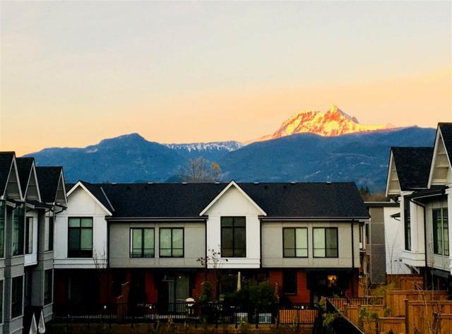 1222 Granite Drive, Squamish, BC V8B 0A9 (#R2320498) :: West One Real Estate Team