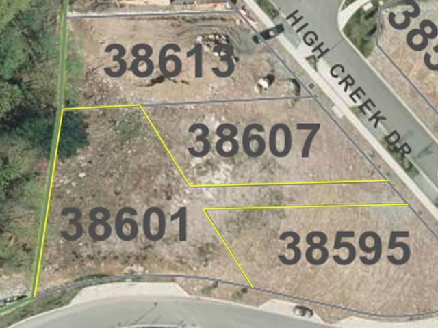 38601 High Creek Drive, Squamish, BC V8B 0C2 (#R2322226) :: Vancouver Real Estate