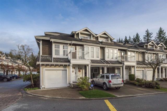 9036 208 Street #17, Langley, BC V1M 3K4 (#R2322463) :: Premiere Property Marketing Team