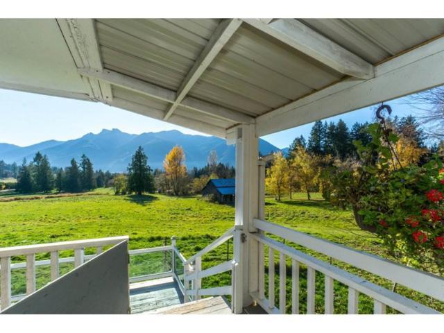 49582 Elk View Road, Ryder Lake, BC V4Z 1E8 (#R2322947) :: Vancouver Real Estate
