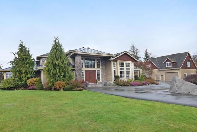 22919 8 Avenue, Langley, BC V2Z 2W3 (#R2327608) :: Premiere Property Marketing Team