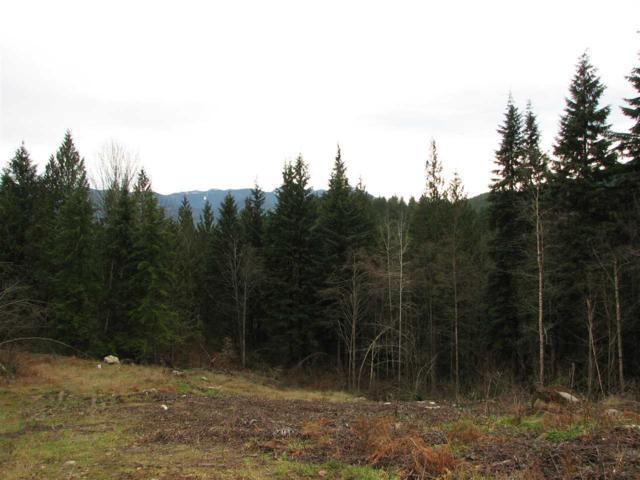31181 Silverhill Avenue, Mission, BC V4S 1G8 (#R2329729) :: Vancouver Real Estate