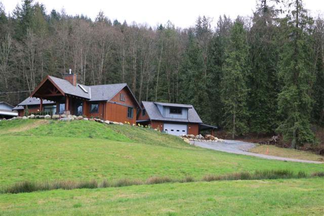30890 Silverhill Avenue, Mission, BC V4S 1G9 (#R2331032) :: Vancouver Real Estate