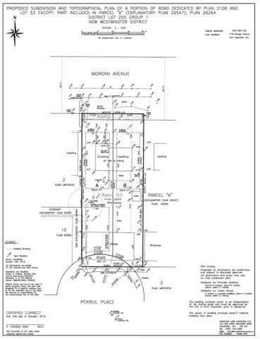 1736 Morgan Avenue, Port Coquitlam, BC V3C 1J7 (#R2333538) :: Royal LePage West Real Estate Services