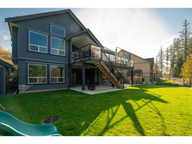 1529 Highlands Boulevard, Agassiz, BC V0M 1A1 (#R2335190) :: Royal LePage West Real Estate Services