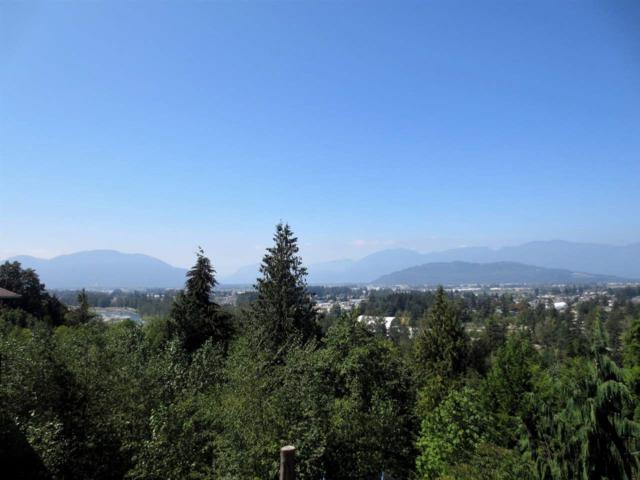 45407 Magdalena Place, Cultus Lake, BC V2R 0K7 (#R2340487) :: TeamW Realty
