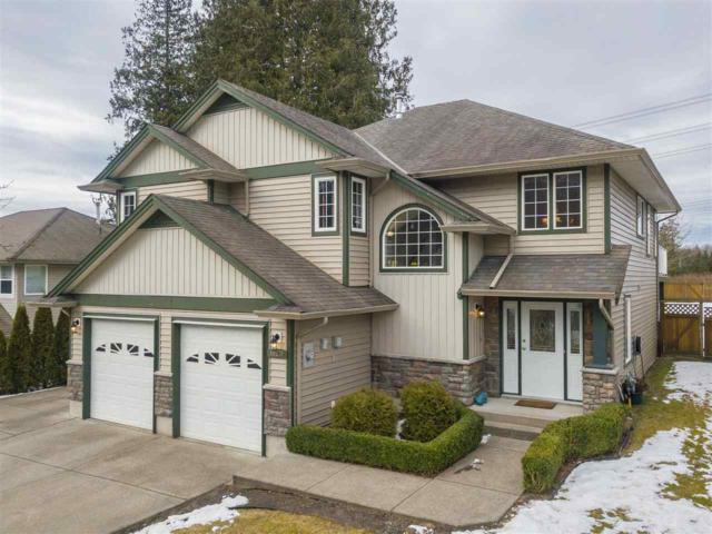 10231 Parkwood Drive, Rosedale, BC V0X 1X1 (#R2343946) :: TeamW Realty