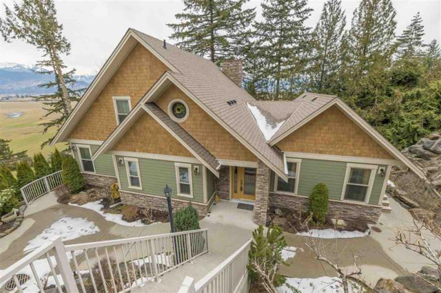 47370 Mountain Park Drive, Chilliwack, BC V2P 7P6 (#R2346839) :: Vancouver Real Estate