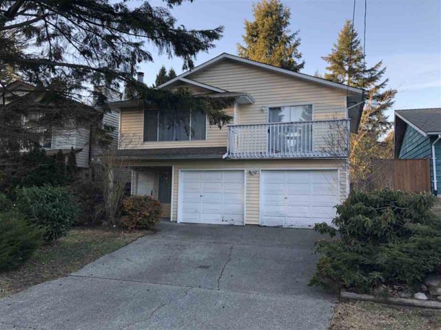 2653 Kitchener Avenue, Port Coquitlam, BC V3B 2B7 (#R2346911) :: Vancouver Real Estate