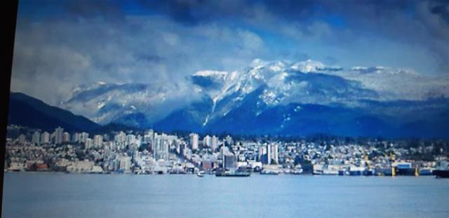 2917 Capilano Road, North Vancouver, BC V7R 4H4 (#R2347766) :: TeamW Realty