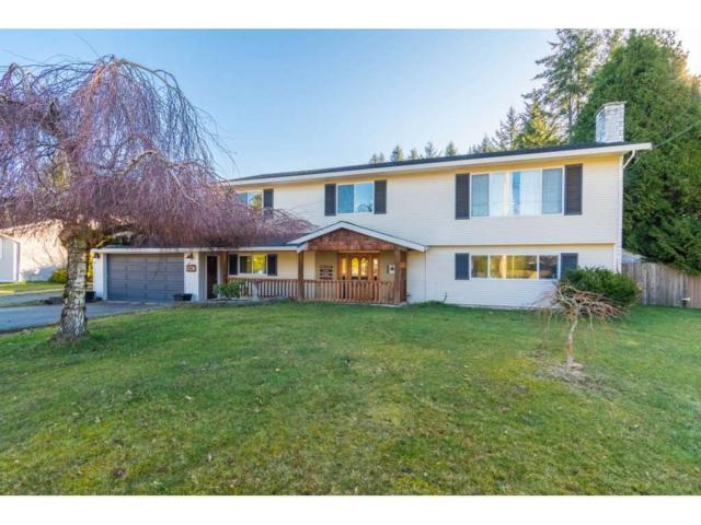 5730 244 Street, Langley, BC V2Z 1G6 (#R2349458) :: Premiere Property Marketing Team