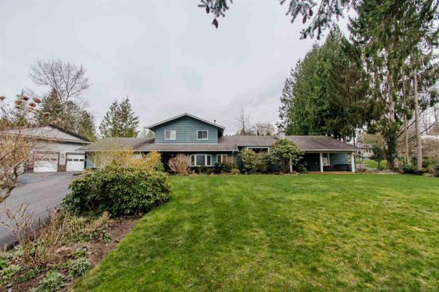 12580 243 Street, Maple Ridge, BC V4R 1M2 (#R2349739) :: TeamW Realty