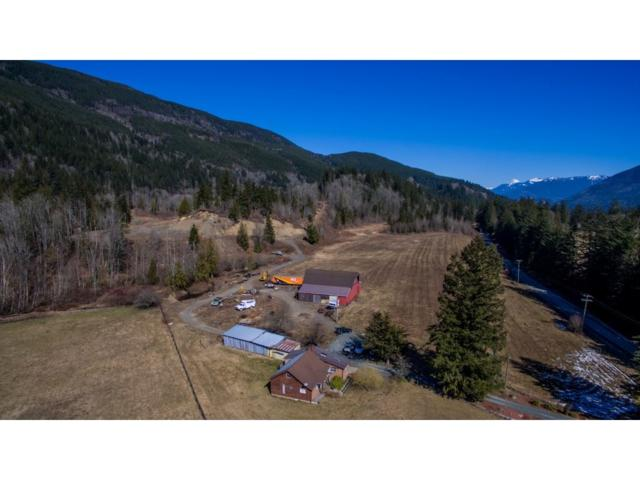 1291 Columbia Valley Road, Columbia Valley, BC V2R 4X6 (#R2349786) :: TeamW Realty